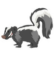 funny skunk animal cartoon vector image vector image
