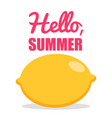 hello summer lemon white background simple vector image