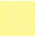Lemon fruit abstract background vector image vector image
