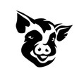 pig head portrait stylized symbol vector image vector image