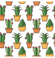 seamless pattern of houseplants in ceramic vector image
