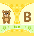 the english alphabet with bear vector image vector image