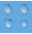Realistic Water drops vector image