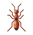 Red ant forest rufa small antenna insect nature vector image
