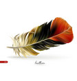 realistic feathers - isolated vector image