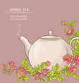 rose tea background vector image vector image