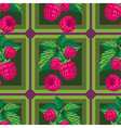 seamless pattern with branches of raspberry vector image vector image