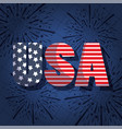 usa text with fireworks design vector image