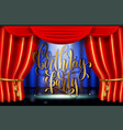 birthday party hand gold lettering poster on stage vector image