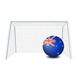 A ball near the net with the flag of New Zealand vector image vector image
