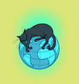 a black cat pet lies on the planet earth vector image