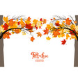 autumnal trees frame vector image vector image