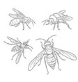 bee wasp bumblebee hornet in outlines vector image vector image