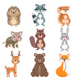 cute forest animals and birds set squirrel hare vector image vector image