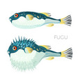 fugu fish japanese puffer fish sketch vector image