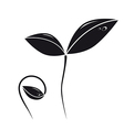 growing plant silhouette vector image vector image
