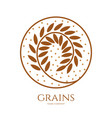 linear icon of grains of wheat or other grain vector image