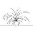 one line drawing house plant in pot vector image vector image