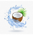 pieces of fresh coconut with leaves water splash vector image