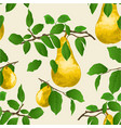 seamless texture branch of pears with yellow pear vector image vector image