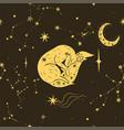 star fox seamless pattern yellow fox and stars vector image