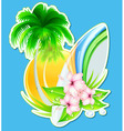 summer insignia vector image