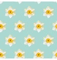White daffodil seamless background vector image