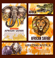 zoo sketch poster wild african animal vector image