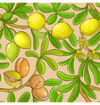 argan branches pattern on color background vector image vector image