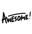 Awesome hand lettering word vector image