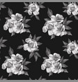 black white roses seamless pattern background vector image