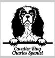 cavalier king charles spaniel - peeking dogs vector image