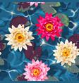 seamless carps and lotus vector image