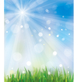 sky and grass vector image vector image