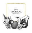 tropical fruits design vector image vector image