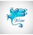 Business logo of blue water splatter web icon vector image