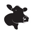 abstract black cow head vector image vector image