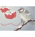 bird and winter berries vector image vector image