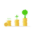 business growth conceptinvesting money like tree vector image vector image