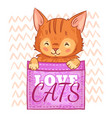 cute cat in pocket love cats pockets kitten and vector image vector image