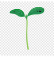 grow up plant icon realistic style vector image