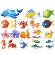 large set many sea creatures on white vector image vector image