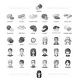 nut view grade and other web icon in black style vector image vector image
