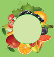 various fruits on green background vector image vector image