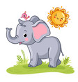 baelephant stands on a green meadow vector image vector image