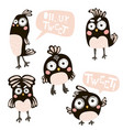 cute birds cartoon characters isolated on vector image