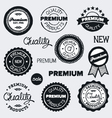 drawn vintage labels vector image vector image