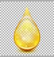 Golden oil droplets eps 10