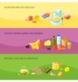 Healthy Food Banner Set vector image vector image