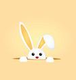 little rabbit vector image